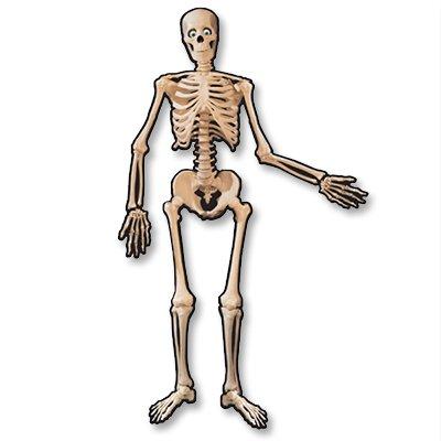 Баннер Скелет подвижный 1,4м 1401-0113