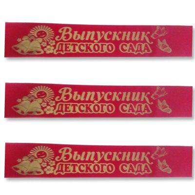 Лента Выпускник ДетСада красная 1501-3369